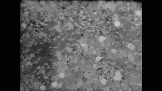 vidéos et rushes de 1940 newly minted coins - hôtel de la monnaie