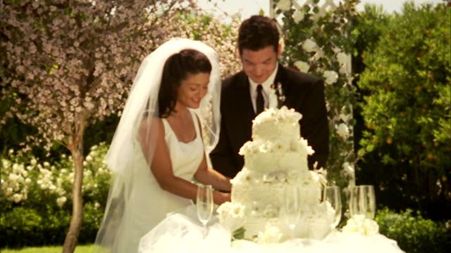CU, ZI, Newly wed couple slicing wedding cake in garden