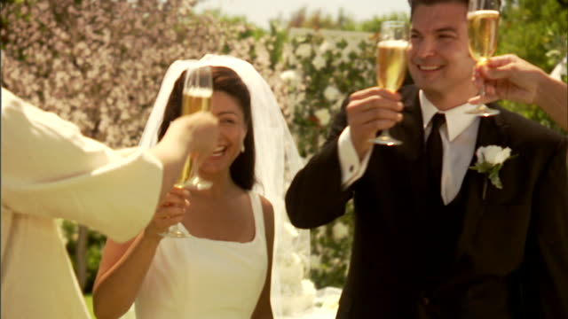 cu, newly wed couple toasting with champagne in garden - formal garden party stock videos & royalty-free footage