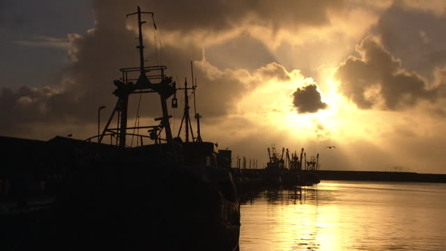 newlyn harbour at dawn fishing trawlers in silhouette cornwall - atmospheric mood stock videos & royalty-free footage