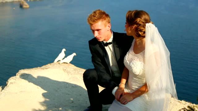 sposi doves e bianco - colomba video stock e b–roll