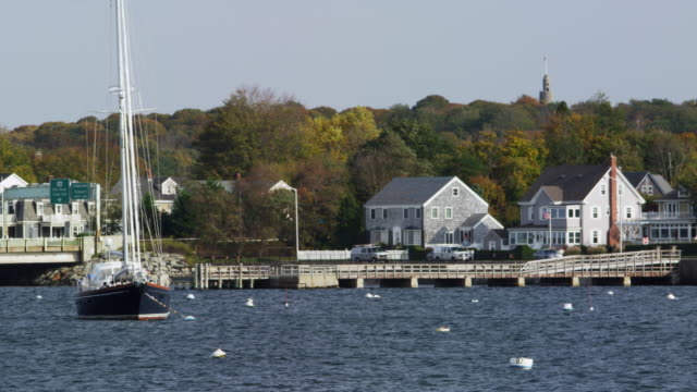 Newport harbor with homes and boats daytime