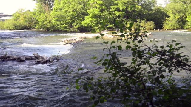 niagara river approaching the american falls of the niagara falls - niagara river stock videos & royalty-free footage