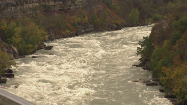 Niagara River white water rapids moving churning rushing rolling vegetation black rocks on each bank Nature no people state park