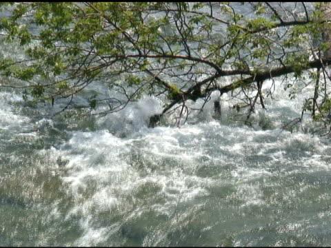 niagara upper rapids 20 - ntsc with sound - river niagara stock videos & royalty-free footage