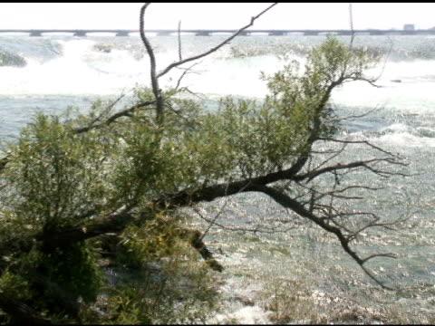 niagara upper rapids 31-ntsc mit ton - fluss niagara river stock-videos und b-roll-filmmaterial