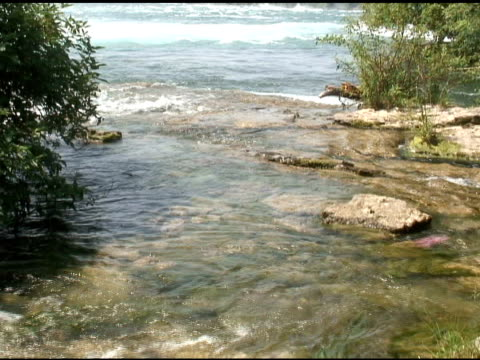 niagara upper rapids 37 - ntsc - river niagara stock videos and b-roll footage