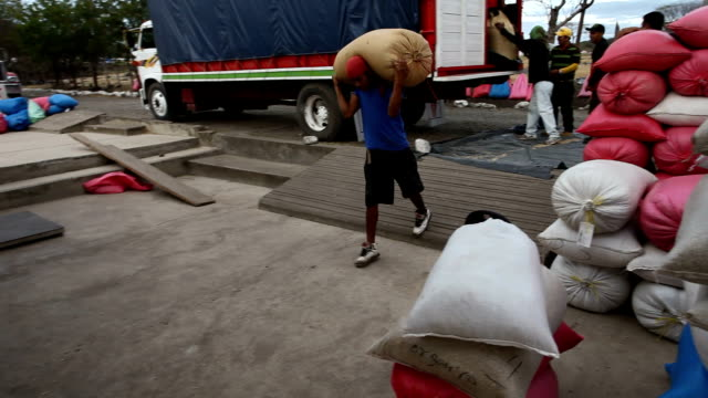 nicaragua, matagalpa, processing arabian coffee (species coffea arabica) - sack stock videos & royalty-free footage