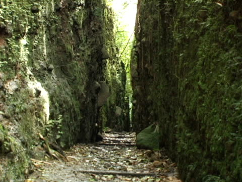 ms, zo, nicaragua, volcan mombacho natural park, narrow path between two foliage covered cliffs - nicaragua stock videos and b-roll footage