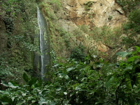 MS, Nicaragua, Waterfall along cliff face in jungle