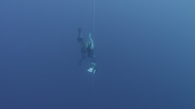 Nice, France, 2012.  World Free diving Championships. UW tilt up following breath hold diver returning to surface