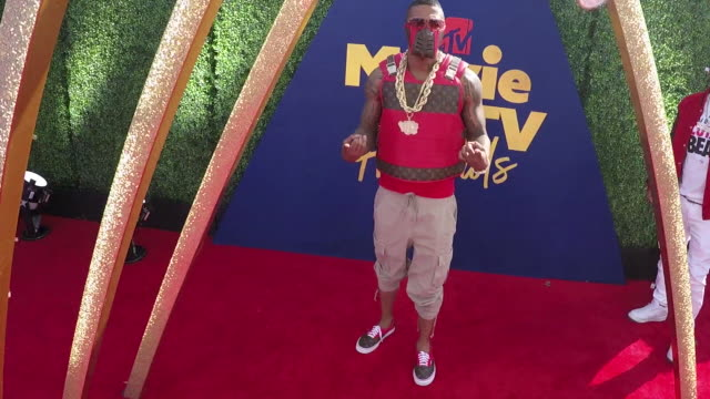 nick cannon at the 2019 mtv movie tv awards alternative views at barkar hangar on june 15 2019 in santa monica california - nick cannon stock videos & royalty-free footage