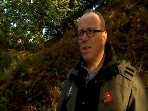 nick champion of the national trust gives opinions on what needs to be done in light of the spread of the ash dieback disease. - national trust video stock e b–roll