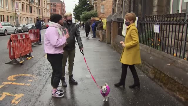 nicola sturgeon, first minister of scotland, chats to voters outside polling station on election day for the scottish parliament, also reveals she is... - mammal stock videos & royalty-free footage