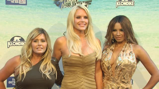 nicole eggert, gena lee nolin, traci bingham at the the comedy central roast of david hasselhoff at culver city ca. - traci bingham stock videos & royalty-free footage