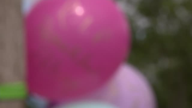 18yearold arrested england london brent fryent country park focus balloons tied to post at scene of murder of bibaa henry and nicole smallman pull - crime and murder stock-videos und b-roll-filmmaterial