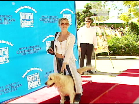 nicollette sheridan at the dine with your dog day at the hyatt regency century plaza in century city, california on october 19, 2006. - ニコレット シェリダン点の映像素材/bロール