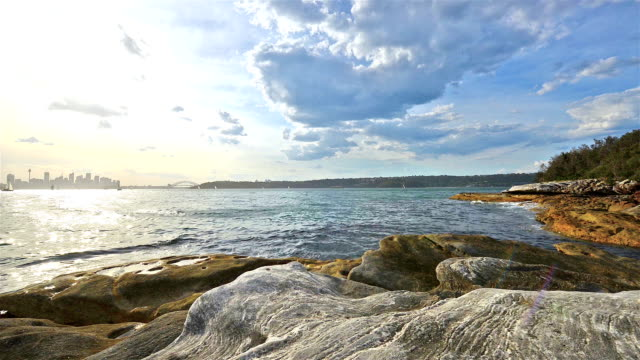 nielsen park, shark bay, new south wales, australia - bay of water stock videos & royalty-free footage