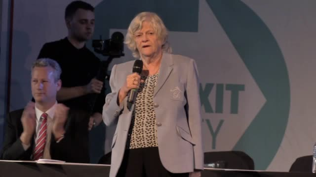 nigel farage holds a rally in newport to launch the brexit party's eu elections campaign in wales. the former ukip leader was joined by ann... - ann widdecombe stock videos & royalty-free footage