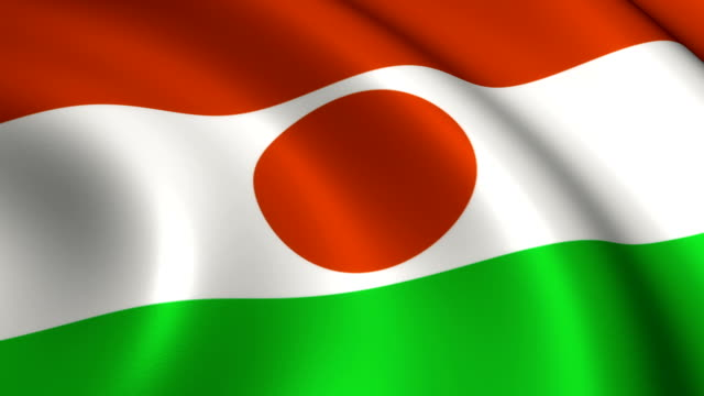 Niger Flag Loopable