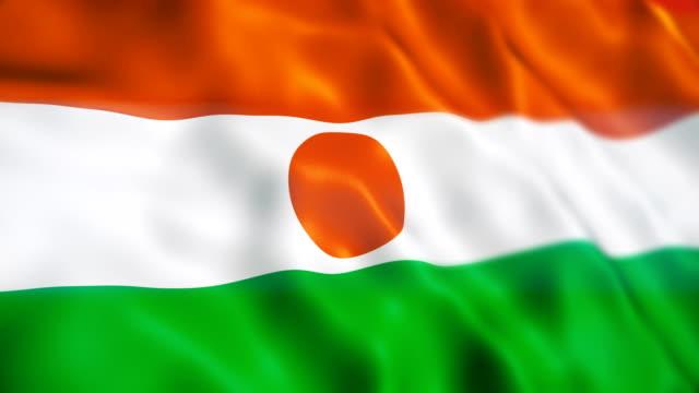 ニジェールの旗 - ニジェール点の映像素材/bロール