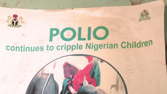 nigeria marks one year since the countrys last case of polio and as a result will be taken off the list of countries where the disease is endemic - endemic stock videos and b-roll footage