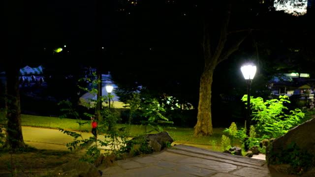 夜ニューヨーク セントラルパーク - 風致地区点の映像素材/bロール