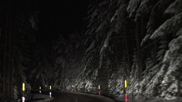 HD Night Drive through Winter Forest