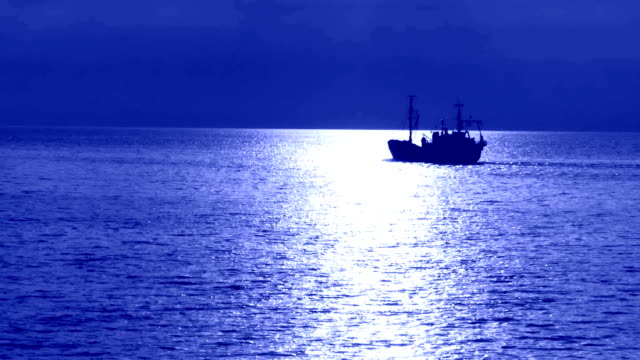 night fishing - fishing boat stock videos & royalty-free footage
