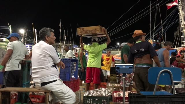 vídeos de stock, filmes e b-roll de night market in belém do pará - fruta