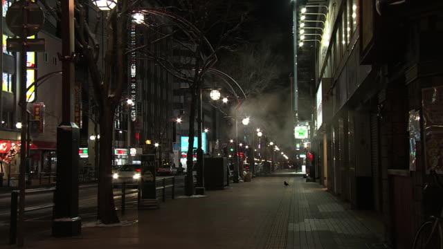 Night Scene Of Susukino, Sapporo, Japan
