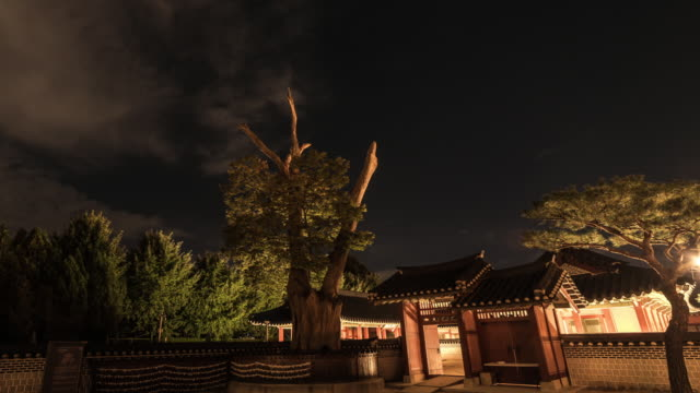night scenery of suwon hwaseong haenggung(ancient palace) and ginkgo tree in suwon hwaseong (unesco world heritage sites) - hwaseong palace stock videos and b-roll footage