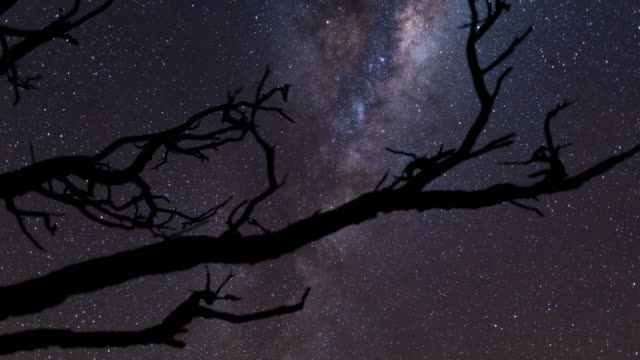 Night Scenery view of Milky Way in New South Wales