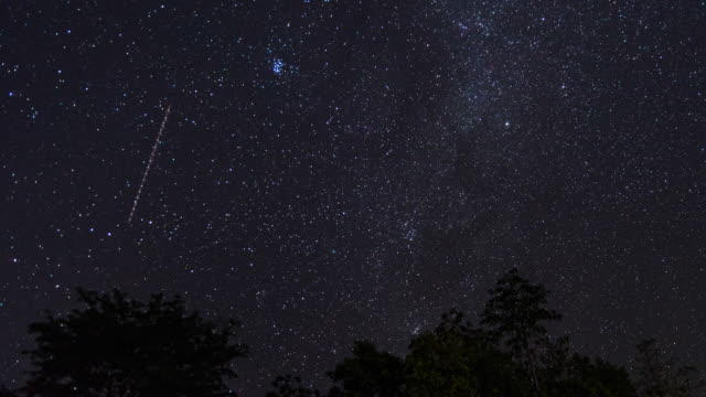 t/l night sky in tropical forest with moving stars - star shape stock videos & royalty-free footage
