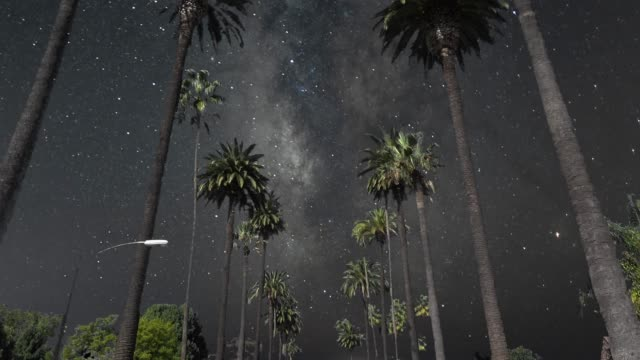 vídeos de stock e filmes b-roll de night sky milky way over beverly hills boulevard palm trees - palmeira