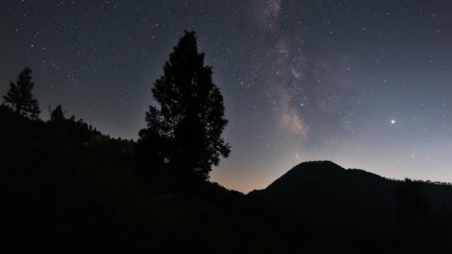vídeos de stock, filmes e b-roll de night sky with a tree / yeongyang-gun, gyeongsangbuk-do, south korea - espaço e astronomia