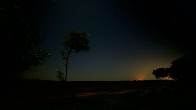 night time lapse, from rural sri lanka - sri lanka stock videos & royalty-free footage