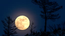Night Time lapse Large full bright moon rises from above hill into sky.