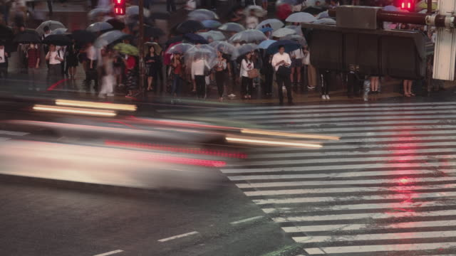 night time time-lapse arial view of shibuya crossing in tokyo in rainy day - segnale per macchine e pedoni video stock e b–roll