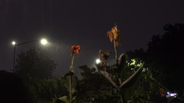 night time torrential rains & lightning - scott mcpartland stock videos & royalty-free footage