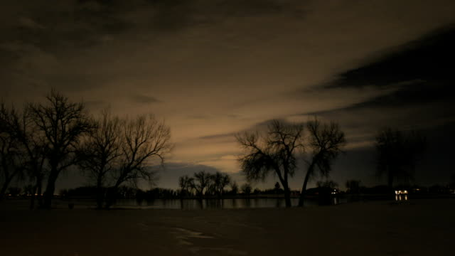 Night Time Trees, Snow, Lake, Pt2