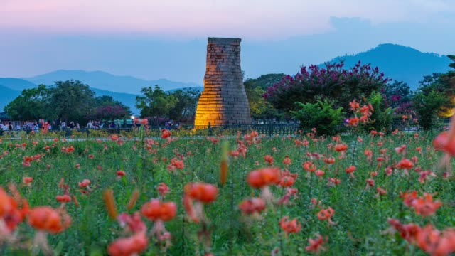 night view of the cheomseongdae observatory(it is the oldest existing astronomical observatory in asia) and flower beds in gyeongju-si - オニユリ点の映像素材/bロール
