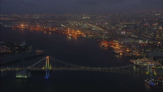 aerial, night view over tokyo downtown - tokyo bay stock videos and b-roll footage