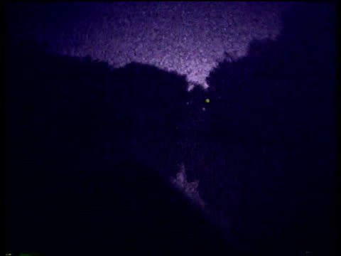 night vision shots of fireflies flickering light around the forest edge of a lake. - night vision stock videos and b-roll footage