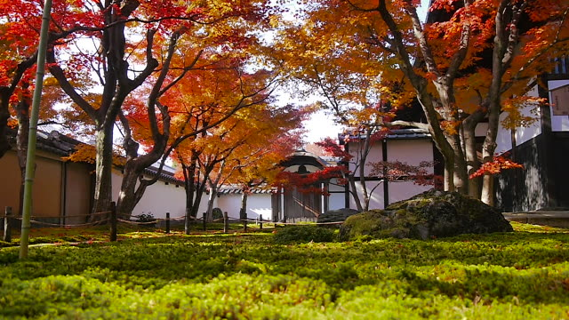 nijo castle in kyoto, japan - kyoto temple stock videos and b-roll footage