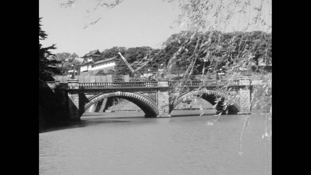ws nijubashi bridge in tokyo with waving tree branches; 1964 - moat stock videos & royalty-free footage