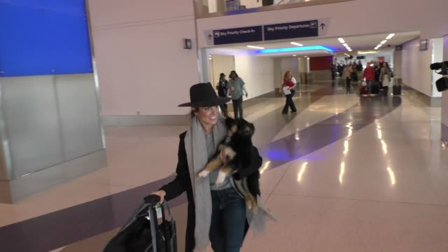 nikki reed talks about her dog as she departs at lax airport in los angeles in celebrity sightings in los angeles, - nikki reed stock videos & royalty-free footage