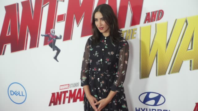 Nikohl Boosheri at the AntMan and the Wasp World Premiere at the El Capitan Theatre on June 25 2018 in Hollywood California