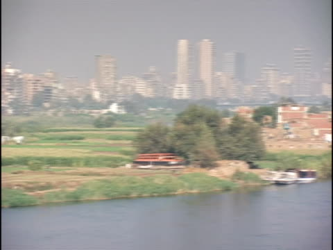 ws, pan, nile river and cityscape, cairo, egypt - fan palm tree stock videos & royalty-free footage
