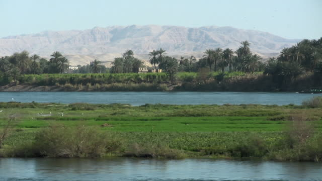 ws, zo, pan, nile river, egypt - river nile stock videos & royalty-free footage